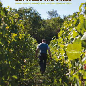 BETWEEN-THE-VINES-COVER